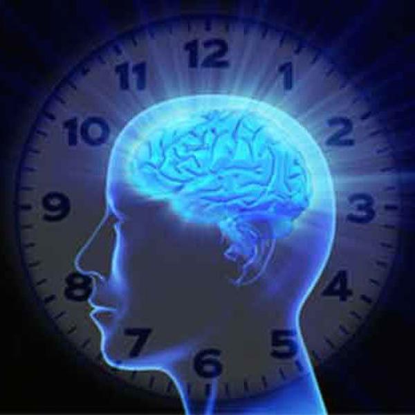 Los ritmos circadianos, ¿qué son?